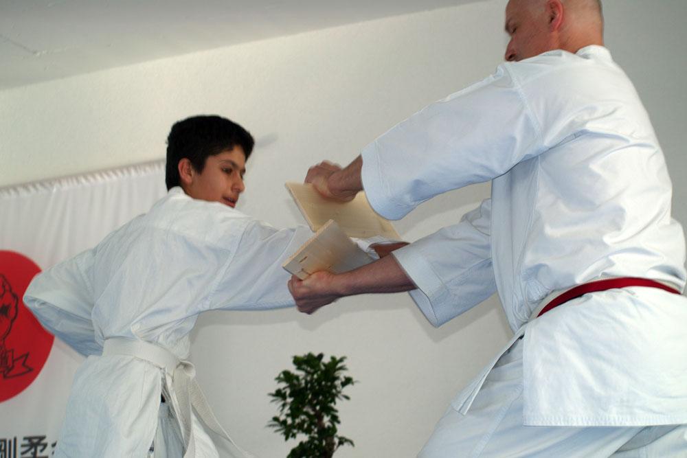 karatedemo-austellung-maerz-10