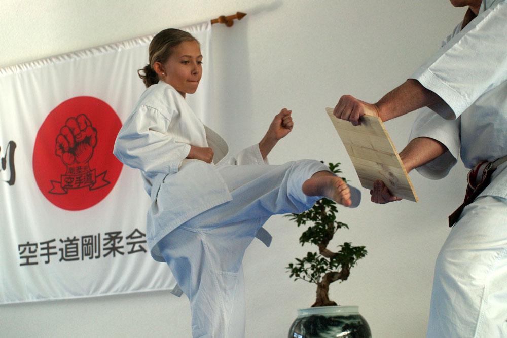 karatedemo-austellung-maerz-11