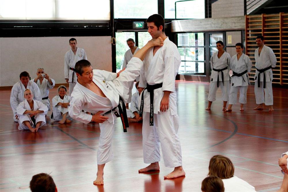 Lehrgang mit Kagawa Sensei