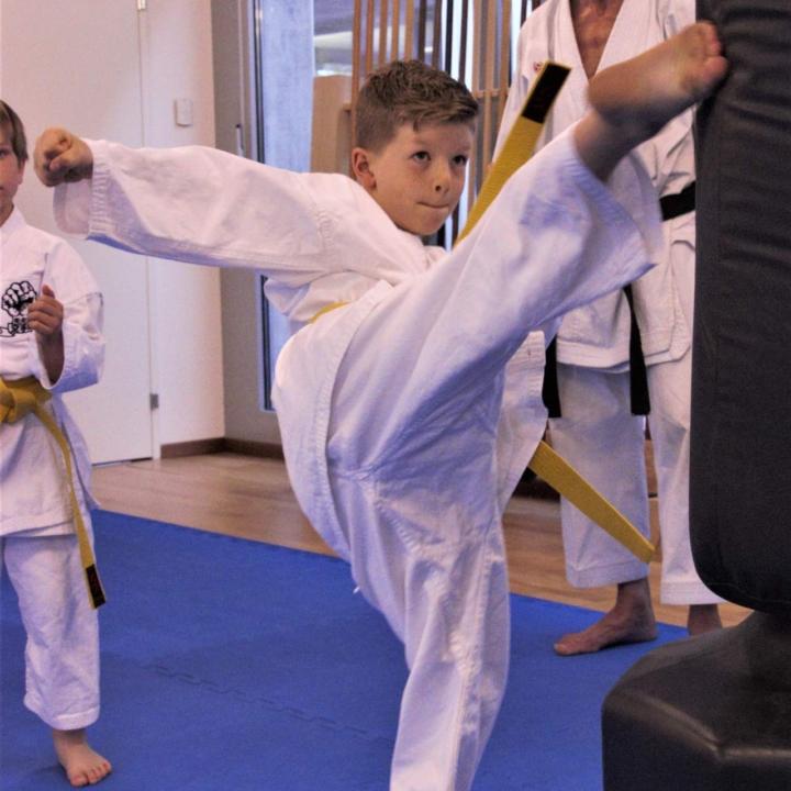 Kinder Karate - Mawashi Geri